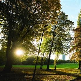 Victoria Park - Parks, Sports & Recreation in Leicester