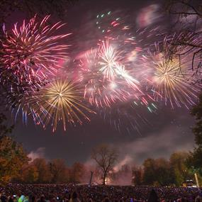Abbey Park Bonfire & Firework Display - Festivals, See & Do in Leicester