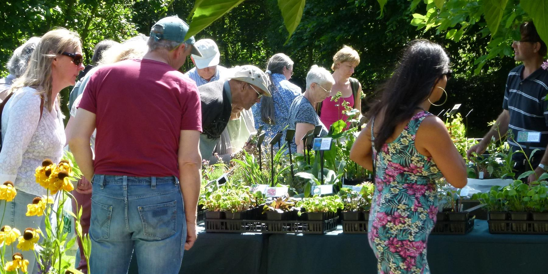 Plant Hunters' Fair at the 1620's House and Garden