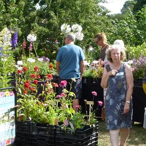 Summer Plant Hunters' Fair at the 1620's House & Garden, Donington Le Heath