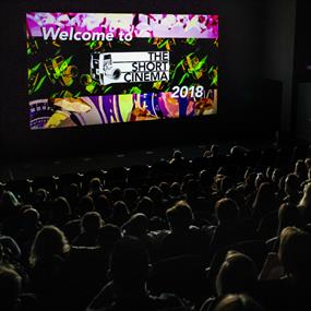 A packed cinema screen watching short films