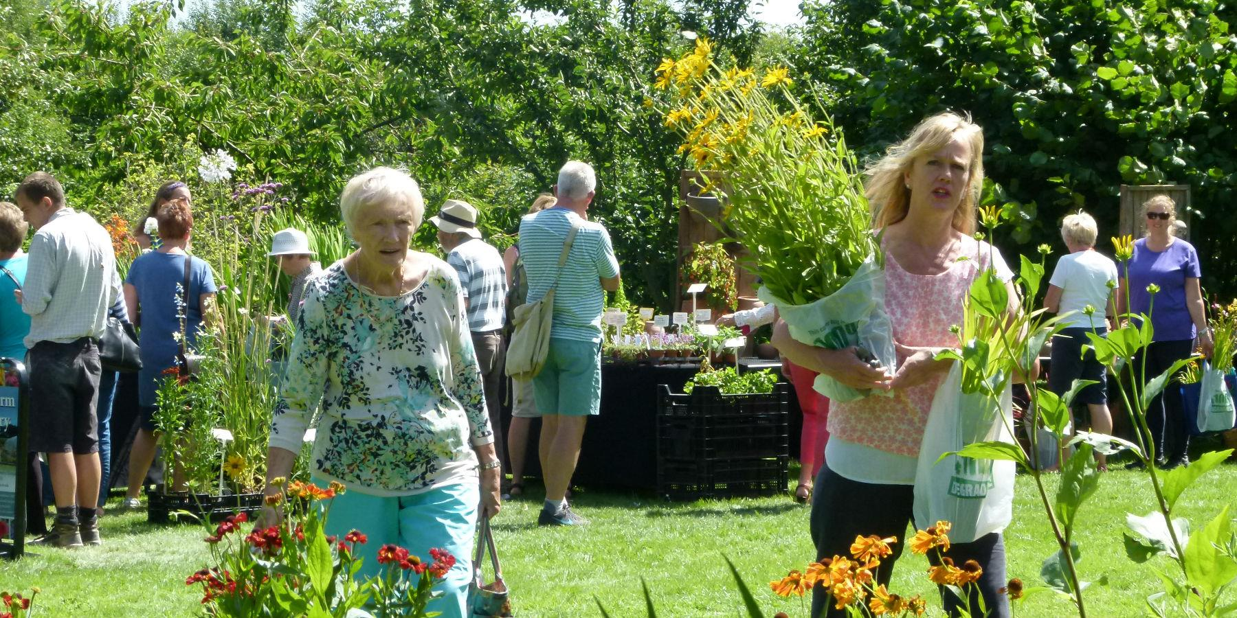 Plant Hunters' Fair at Donington Le Heath